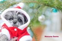 Merry Christmas from Nazuna Santa - ぶらり休暇