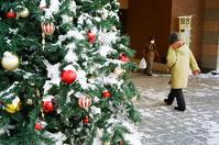クリスマスツリーに降る本物の雪 - 照片画廊