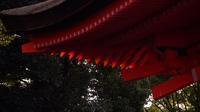 下鴨神社 - belakangan ini