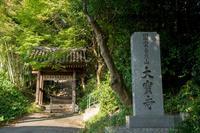 大宝寺 - かたくち鰯の写真日記2