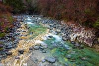 渓谷の流れ - harley-katydid