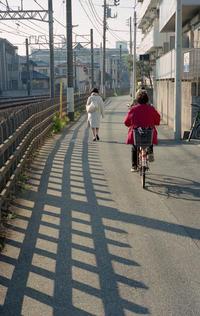 路上の線路 - 心のカメラ   more tomorrow than today ...