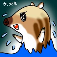 妖怪へなちょこウリ坊主できました - 動物キャラクターのブログ へなちょこSTUDIO