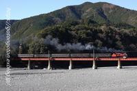 初めての大井川鉄道 - きょうはなに撮ろう