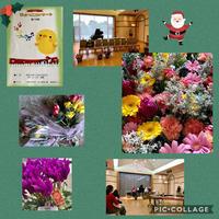 第15回 ぴよっこコンサート - Rico 花の教室