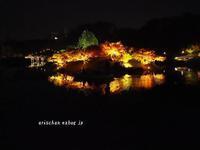 掬月亭からの紅葉ライトアップ@栗林公園 - アリスのトリップ