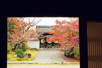 京都 醍醐寺の紅葉 1 - 光 塗人 の デジタル フォト グラフィック アート (DIGITAL PHOTOGRAPHIC ARTWORKS)