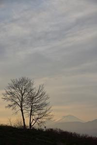 パノラマの丘② - 光画日記