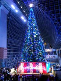 クリスマスツリー - Blue Planet Cafe  青い地球を散歩する