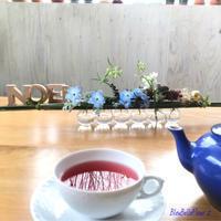 Noël tea ☆ - Bleu Belle Fleur☆ブルーベルフルール