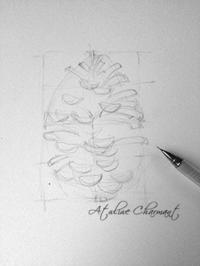 大まかな形まで(デッサンその④) - Atelier Charmant のボタニカル・水彩画ライフ