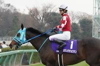 最強の3歳馬世代、有馬記念もブラストワンピース(戦い終わり日が暮れて) - Turfに魅せられて・・・(写真紀行)