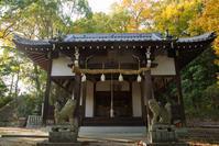 山内神社 - かたくち鰯の写真日記2