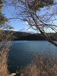 本日の西湖、6℃。 - Naturfreude