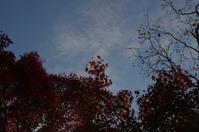 姫路城周辺にて(2018/11/18)其の④ - 南の気ままな写真日記