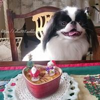 犬クリスマスおやつ☆彡リンゴとバナナのクラフティ - 狆の茶々丸