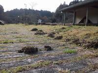 12月27日。今年もお世話になりました。 - 千葉県いすみ環境と文化のさとセンター
