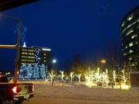 Winter Solstice  最短日を祝う - f's note ak