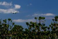 隠し技 - 南の島の飛行機日記