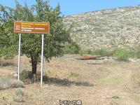 エラティアのミケーネ時代の墓地 - 日刊ギリシャ檸檬の森 古代都市を行くタイムトラベラー
