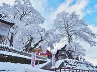 雪の境内へ行ってみました - 浦佐地域づくり協議会のブログ