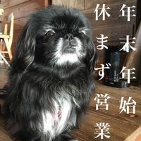 2018 年末年始2019 - 宮島帆布