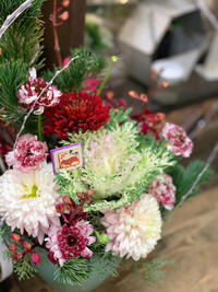 年末の花屋と雲龍梅 - ルーシュの花仕事