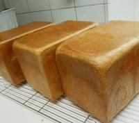1月の教室のお知らせ - 手作りパン・料理教室        (えぷろん・くらぶ)