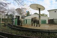 2018年12月王子動物園その1 - ハープの徒然草