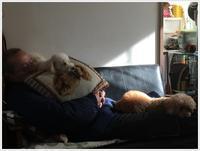 お休みの日は、パパさんが二階から降りて来てくれるのが待ちきれないさくらと大 - さくらおばちゃんの趣味悠遊