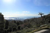 澄んだ空気のハーブ園 - 神戸布引ハーブ園 ハーブガイド ハーブ花ごよみ