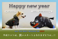 Final new year's day of HEISEI. - ハツイヌ。