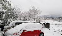 雪です - 八風農園 雅 鈴鹿連峰の御在所岳の麓で自然食品を製造販売してる農園です!