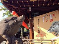 来年の年賀状に使える写真でした。京都・護王神社 足腰御守 - 設計事務所 arkilab