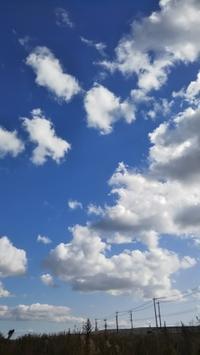 ~とある日の空もよう。 - オバサンBの週末asobi