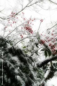 雪景色その2 - Illusion on the Borderline  II @へなちょこ魔術師