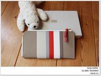 #RIOWA 】カラフルなストライプが可愛い!だけではない財布。薄くて軽くて使いやすいニョだ【旅の支度】 - ツルカメ DAYS