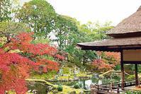 京都 醍醐寺の紅葉 5 - 光 塗人 の デジタル フォト グラフィック アート (DIGITAL PHOTOGRAPHIC ARTWORKS)