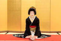 芸妓・雛佑誕生(祇園東・雛佑さん) - 花景色-K.W.C. PhotoBlog