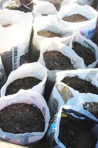 堆肥もお引っ越し準備 - ぬるぅい畑生活