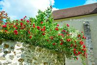 〈9日目-2〉 緑あふれるシャマランド城(5/21-その2) - わたしの足跡 1.5 ~ときどきパリ