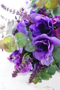 ラナン・アネモネ・チューリップ♪アトリエ内は春ぅ~外は雪ぃ。。。 - お花に囲まれて