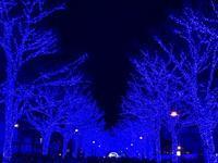 青の洞窟 - sakurairo