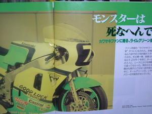 ごあいさつ - kawasaki チームグリーンを愛する 馬鹿な男の夢