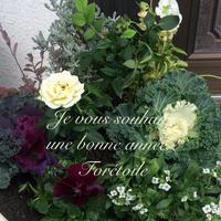 Bonne année - Foretoile~フォレトワール~ アトリエと日々のこと