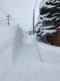 岩見沢、本格的な冬が来た - 『文化』を勝手に語る