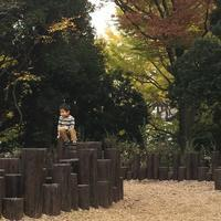ご挨拶^_^v - ~おざなりholiday's^^v~ <フィルムカメラの写真のブログ>