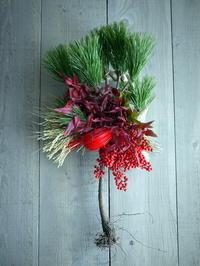 根引松のお正月飾り。水引が赤。南区北ノ沢にお届け。2018/12/26。 - 札幌 花屋 meLL flowers