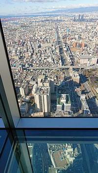 2018/12/30 年末恒例、大阪の家族と河豚 - 太鼓持の「続・呑めばのむほど日記」