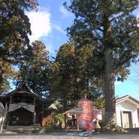 大晦日のウォーター・タワー・バード - 下呂温泉 留之助商店 店主のブログ